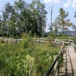 Mason Neck State Park - Lorton, VA - Virginia State Parks