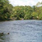 Peshtigo River Campground - Crivitz, WI - RV Parks