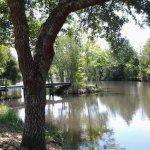 Cedar Lakes Rv Park & Cmpgrnd - Milton, FL - RV Parks