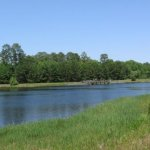 Blythe Island Park - Brunswick, GA - RV Parks