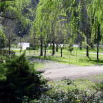 Smokey Hollow Campground - Lodi, WI - RV Parks