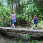 Colt Creek State Park - Lakeland, FL - Florida State Parks