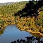 Ozark–St. Francis National Forest - Russellville , AR - National Parks