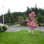 Pheasant Ridge RV Resort - Wilsonville, OR - RV Parks