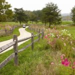 Grayson Lake State Park - Olive Hill, KY - Kentucky State Parks