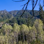 Grasshopper Meadows Campground - Leavenworth, WA - Free Camping
