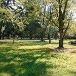 Buena Vista Camping Resort - Buena, NJ - RV Parks