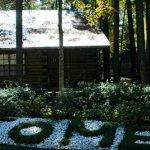 Lake O' The Woods - Flint, TX - RV Parks