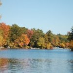 Bowdish Lake Camping Area - Chepachet, RI - RV Parks