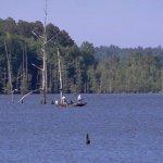 Lake D'Arbonne State Park - Farmerville, LA - Louisiana State Parks