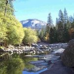 Wawona Campground - Mariposa Grove, CA - RV Parks