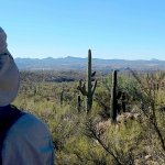 Sophie Flats - Wickenburg, AZ - Free Camping
