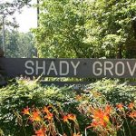 Shady Grove Campground - Cumming, GA - County / City Parks