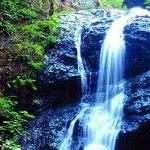 Moran State Park - Olga, WA - Washington State Parks