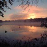 Hamburg State Park - Mitchell, GA - Georgia State Parks