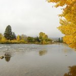 Wenatchee River County Park - Monitor, WA - County / City Parks