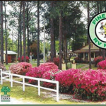 Pine Lake RV Park - Fountain, FL - RV Parks