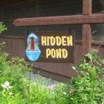 Hidden Pond Campsite - Brant Lake, NY - RV Parks