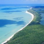 Cayo Costa State Park - Boca Grande, FL - Florida State Parks