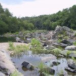 Cossatot River State Park-Natural Area - Wickes, AR - Arkansas State Parks