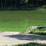 West Point Boat Ramp and Camping - West Point, KY - RV Parks