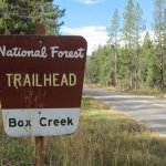 Box Creek Trailhead & Campground - Moran, WY - Free Camping