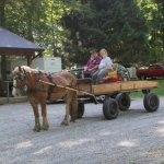Tanglewood Acres  - Bainbridge, OH - RV Parks