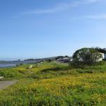 Westside Regional Park - Bodega Bay, CA - County / City Parks