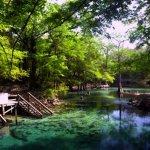 Madison Blue Spring State Park - Lee, FL - Florida State Parks