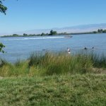 Buena Vista Aquatic Recreational Area - Taft, CA - County / City Parks