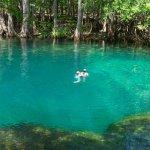 Manatee Springs State Park - Chiefland, FL - Florida State Parks