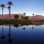 The Springs at Borrego RV Resort - Borrego Springs, CA - RV Parks