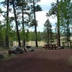 Winn Campground Apache-Sitgreaves National Forest -  Springerville, AZ - National Parks