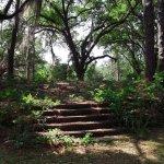 Chehaw - Albany, GA - County / City Parks