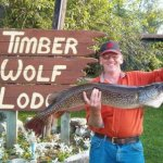 Timber Wolf Lodge  - Ely, MN - RV Parks