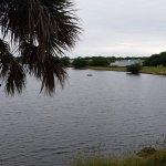 Hawaiian Isles RV Resort - Ruskin, FL - RV Parks