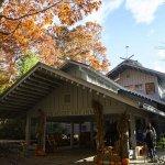 Hike Inn at Amicalola Falls - Dawsonville, GA - RV Parks
