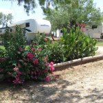 A Country Breeze RV Park - Somerset, TX - RV Parks