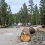 Glass Creek Campground - June Lake, CA - Free Camping