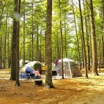 Gateway to Cape Cod RV Campground - Rochester, MA - Thousand Trails Resorts