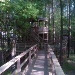 Cedar Glades Park - Hot Springs, AR - County / City Parks
