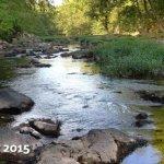 Eno River State Park - Durham, NC - North Carolina State Parks
