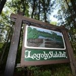 Logoly State Park - Magnolia, AR - Arkansas State Parks