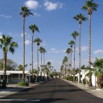 Royal Palm RV Resort - Phoenix, AZ - RV Parks