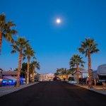 Araby Acres RV Resort - Yuma, AZ - Encore Resorts