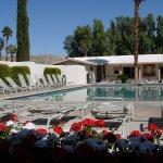 Palm Springs / Joshua Tree KOA - Desert Hot Springs, CA - KOA