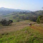 Joseph D Grant County Park - Mount Hamilton, CA - County / City Parks