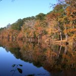 Bouton Lake Campground - Zavalla, TX - Free Camping