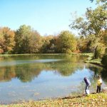 Timberline Lake Park Inc - Le Roy, NY - RV Parks