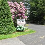 Raccoon Holler Campground - Jefferson, NC - RV Parks